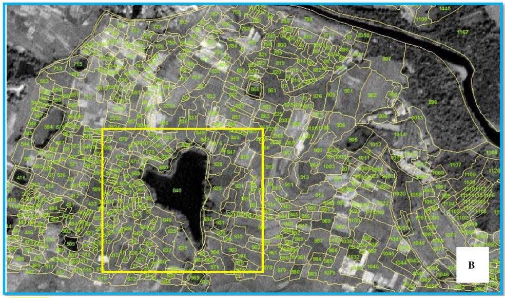 research area ( yellow box ) over the satellite imagery Fig. 7 Map with spatial adjustment
