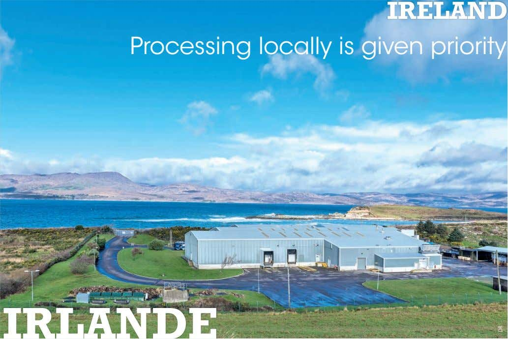 IRELAND Processing locally is given priority IRLANDE DR