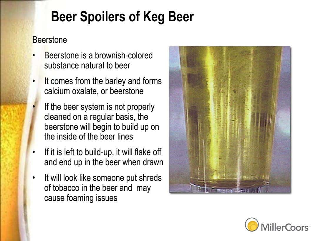 Beer Spoilers of Keg Beer Beerstone •   Beerstone is a brownish-colored substance natural to