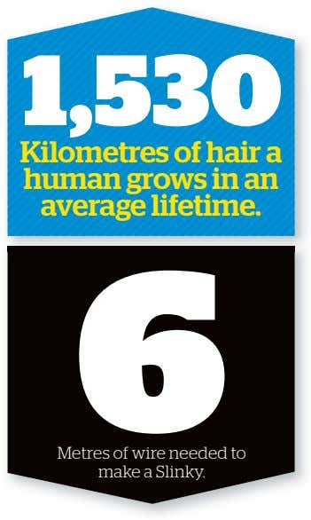 1,530 12,600 Kilometres of hair a human grows in an average lifetime. Number of calories