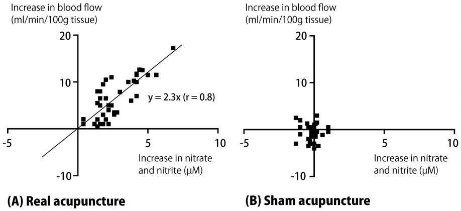 primarily from changes that occurred in the forearm itself. Figure 6. Relationship between amount of increase