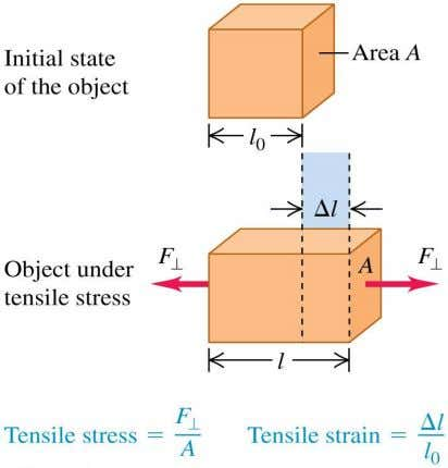 by tensile strain, and is given by Y = ( F  / A )( l