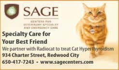 Specialty Care for Your Best Friend We partner with Radiocat to treat Cat Hyperthyroidism 934