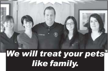 We will treat your pets like family.
