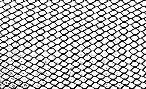 524R-10 ACI COMMITTEE REPORT Fig. 5.1—Diamond mesh lath. Fig. 5.2—3/8 in. rib lath. Fig. 5.3—Woven-wire mesh