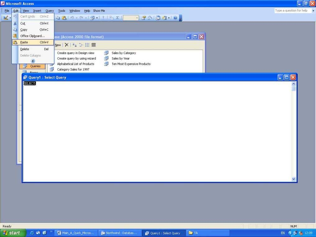 clicking Paste . Pasting the SQL into the SQL view window The result will be that