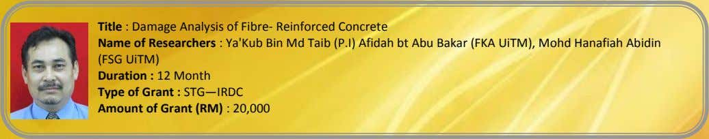 Title : Damage Analysis of Fibre- Reinforced Concrete Name of Researchers : Ya'Kub Bin Md