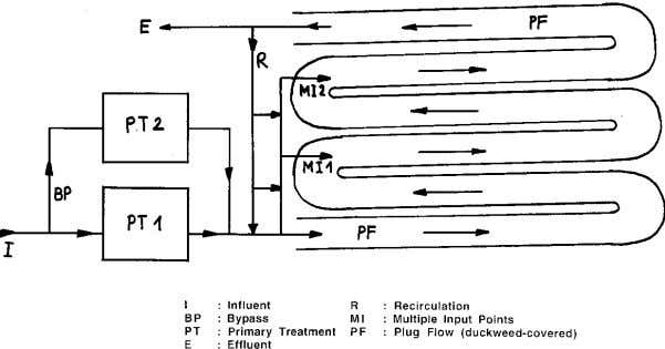 duckweed-based wastewater treatment and protein production. Batch-operated ponds (Phot. 3, Fig. 5) are a feasible option