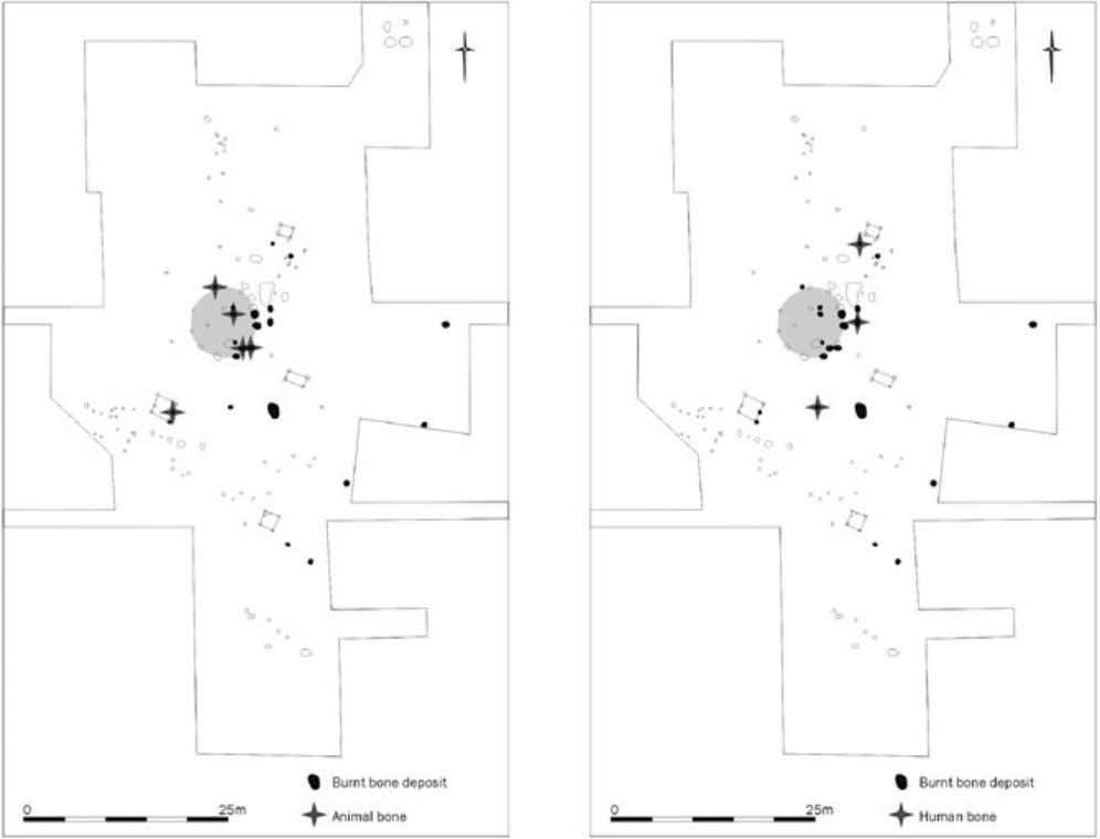 POST-MIDDENISM Figure 8 Distribution of burnt human and animal remains at Toll House. Waldron in Guttman