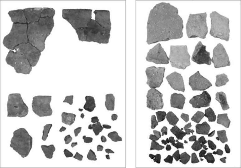 POST-MIDDENISM Figure 3 Mixed pottery assemblages from two later Bronze Age pits at Broom. Photo: M.