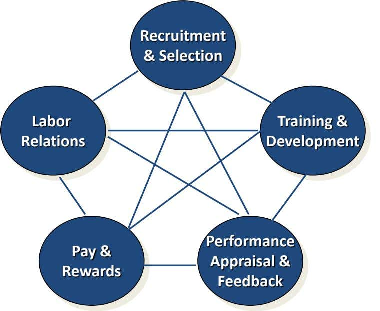 Recruitment & Selection Labor Relations Training & Development Performance Pay & Appraisal & Rewards Feedback