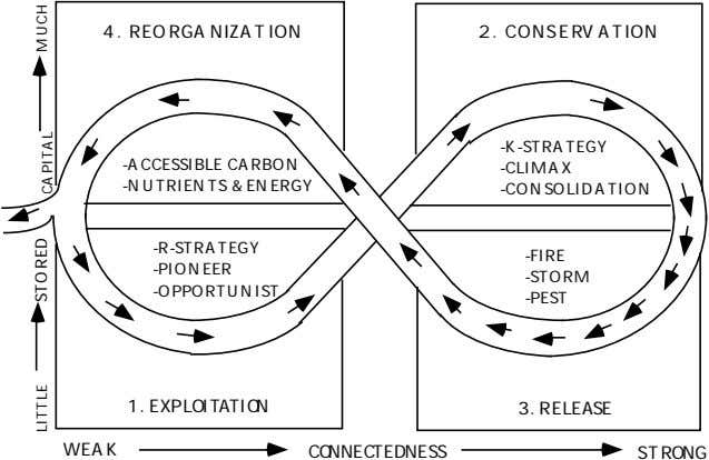 4 . REORGANIZATION 2 . CONS ERV ATION -K-strategy -Accessible carbon -Nutrients & energy -Climax