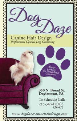 Canine Hair Design Professional Upscale Dog Grooming Always Looking Professional for Groomers! 350 N. Broad