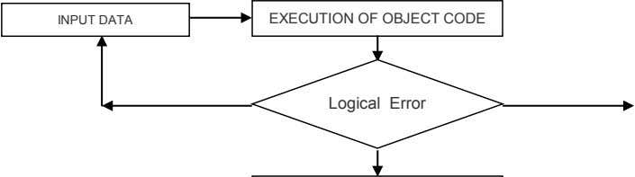 INPUT DATA EXECUTION OF OBJECT CODE Logical Error