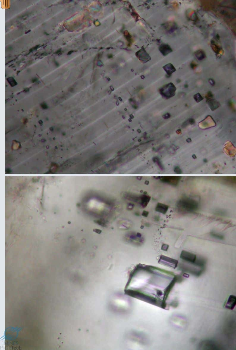 Inclusions fluides • Inclusions de CO 2 supercritique dans les feldspaths, plagioclase en haut, feldspath
