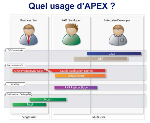 Informatique décisionnelle : Applications et Limites 4.3.8. Les langages Figure 10 : L'usage d'Apex Les langages