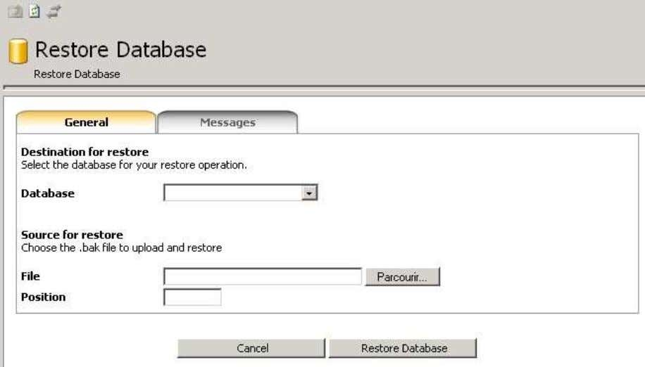 for MS SQL Server 6.7. Restore Wizard (Web Hosting) Remark: This wizard has been specially developed