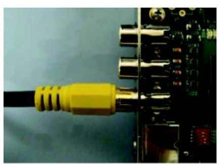 video cable from a video display to the EVM board's DAC D Video Out RCA jack