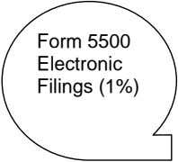 Form 5500 Electronic Filings (1%)