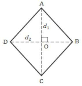 Trapezium Area = For Parallelogram Area = bh For Rhombus Area = For Rectangle Area =