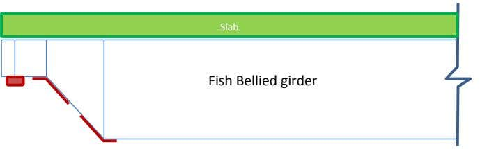Slab Fish Bellied girder