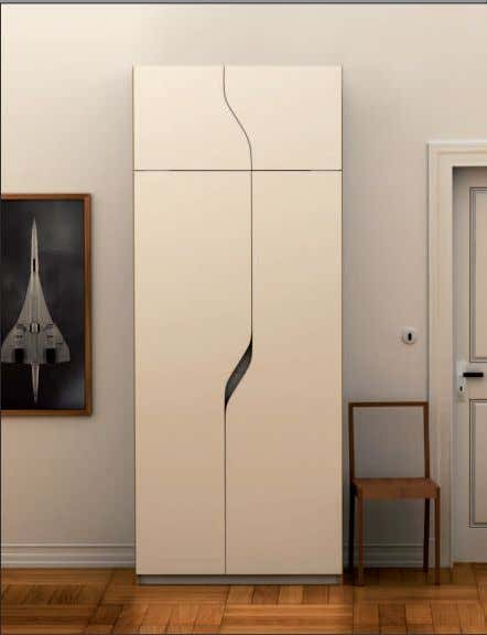 slow-motion fittings. The wardrobe is supplied unassembled. PLANE KLEIDERSCHRANK DESIGN FELIX STARK Art.-Nr.