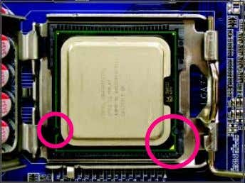 and push the CPU socket lever back into its locked position. Step 4: Hold the CPU