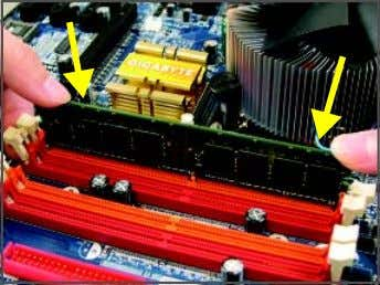 correctly install your memory modules in the memory sockets. Step 1: Note the orientation of the