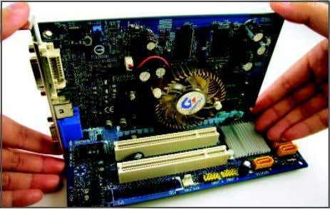 Installing and Removing a PCI Express x16 Graphics Card: • Installing a Graphics Card: Gently push