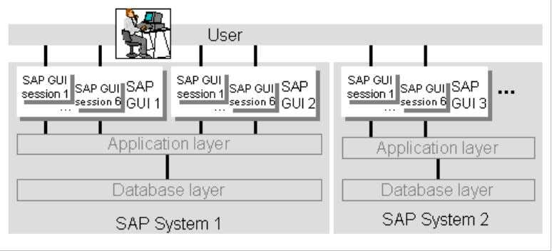 ABAP Programming (BC-ABA) 4 application server, and receives data for display from it. While a SAP