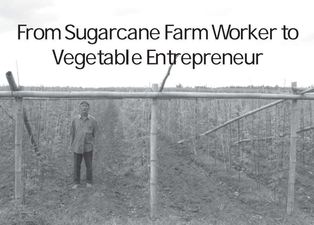 From Sugarcane Farm Worker to Vegetable Entrepreneur