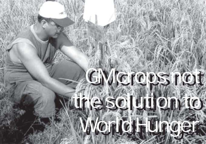 GM GM crops crops not not the the solution solution to to World World Hunger
