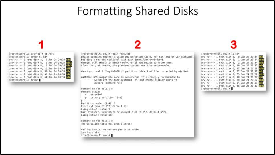 "Formatting Shared Disks Start the ""racnroll1"" VM and login a root user. Now we have"