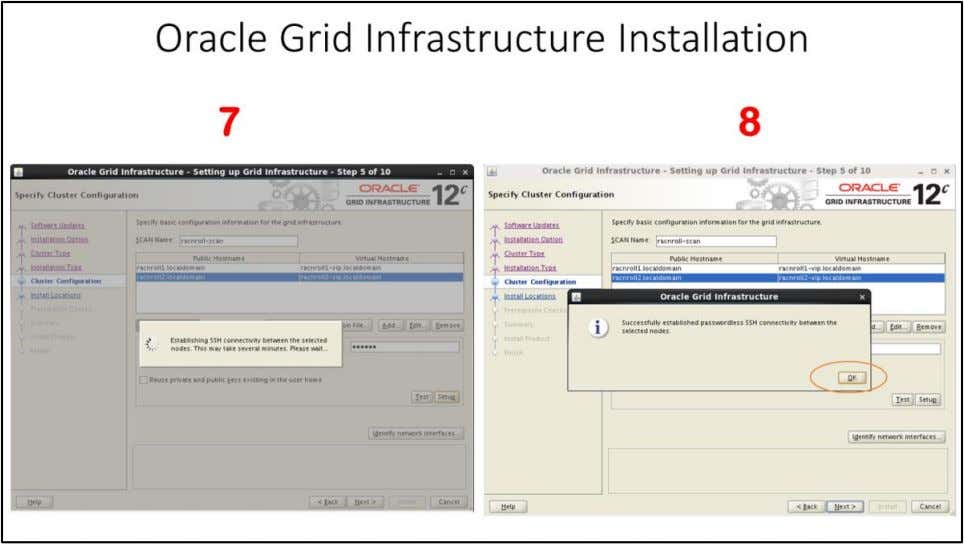 "Oracle Grid Infrastructure Installation – Specify Cluster Configuration window 7. ""SSH Connectivity"" setup will"