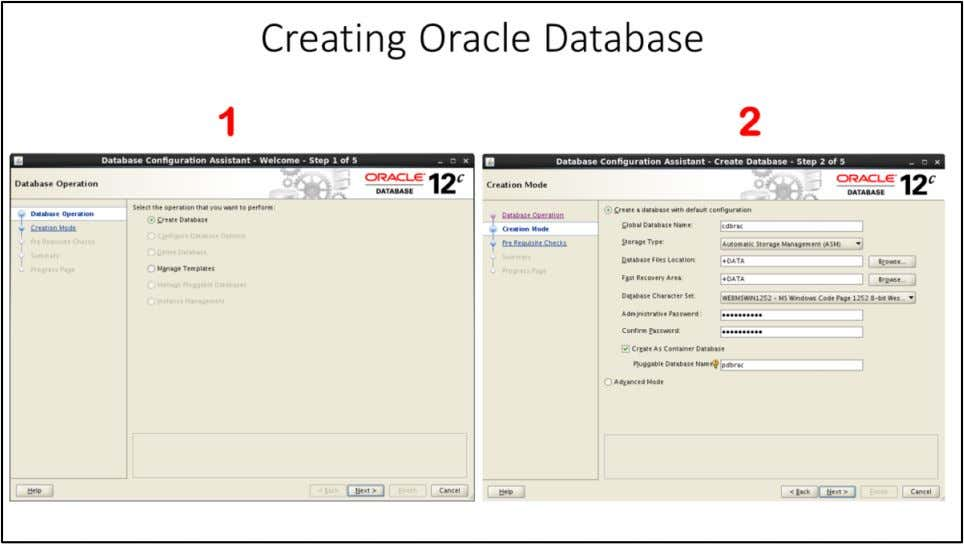 1. The Database Operation window appears. Select Create Database. Click Next . 2. The Creation