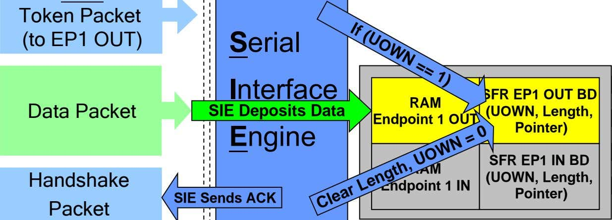 If (UOWN == 1) Token Packet (to EP1 OUT) Serial Interface Data Packet SIE Deposits