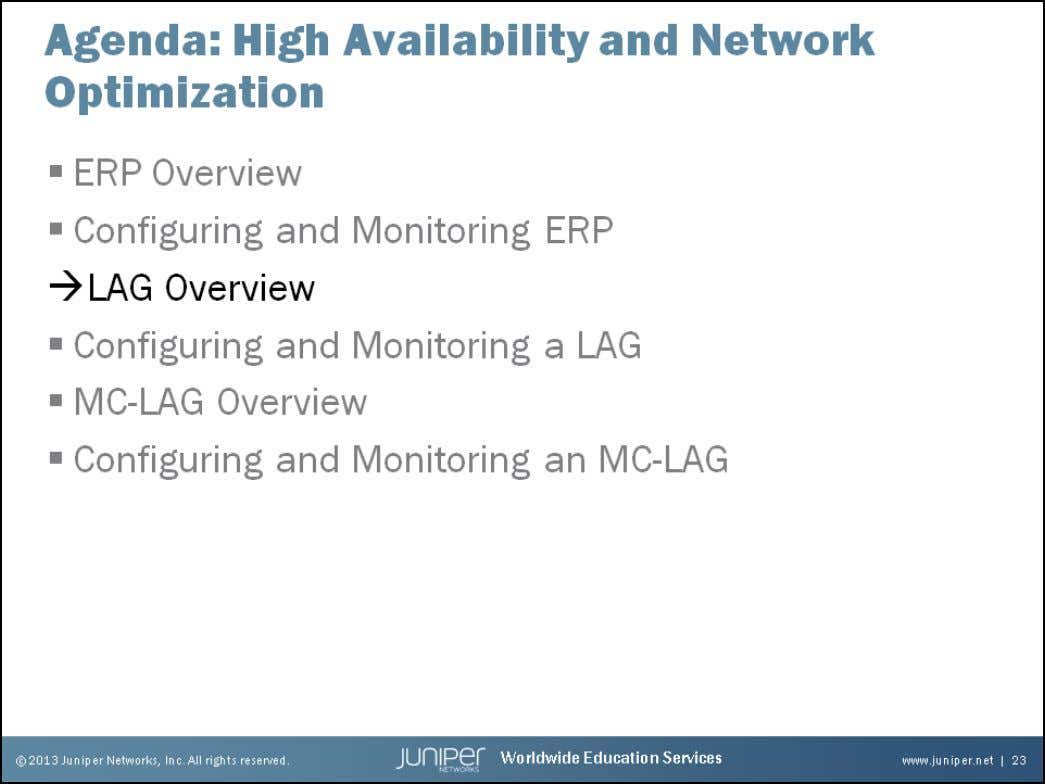 Junos Service Provider Switching Link Aggregation Group Overview The slide highlights the topic we discuss next.