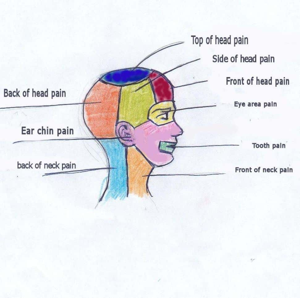 Head and Neck pain 3 PDF created with pdfFactory Pro trial version www.pdffactory.com