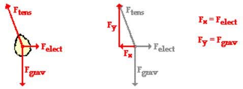 the rightward electrostatic force ( F e l e c t ). Since the mass of