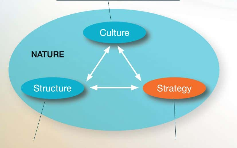 artifacts, core values, and behaviors of the organization How an organization designs relationships between areas or