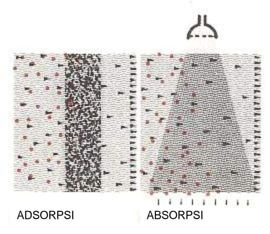ADSORPSI ABSORPSI