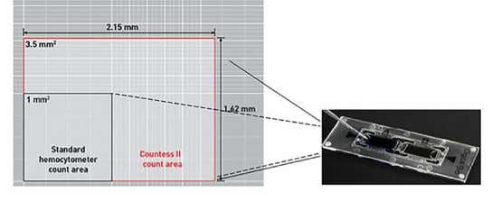 (Figure 2). Area: 2.15 mm x 1.62 mm (3.48 mm 2 ) Figure 2. Counting area.