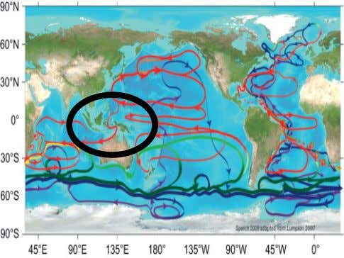 the Indonesian Seas and Throughflow (ITF) • • • • • • • • • •