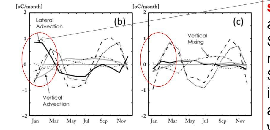 vertical mixing and Q cools SST, i.e the ITF impacts SST by advection of warm water