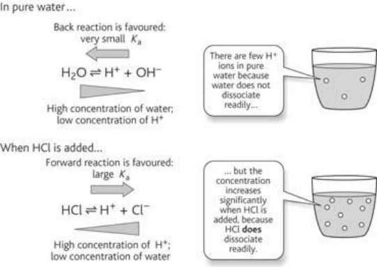 have a pH of 6 and have the lowest concentration of H+ ions Figure 1D.4 Dissociation