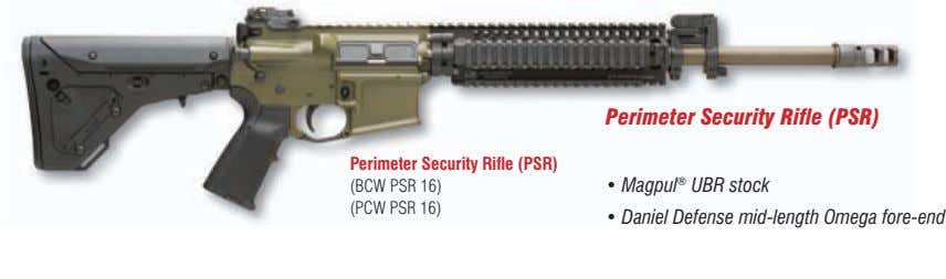 Perimeter Security Rifle (PSR) • Perimeter Security Rifle (PSR) (BCW PSR 16) (PCW PSR 16)