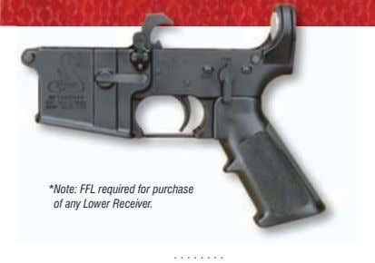 *Note: FFL required for purchase of any Lower Receiver.