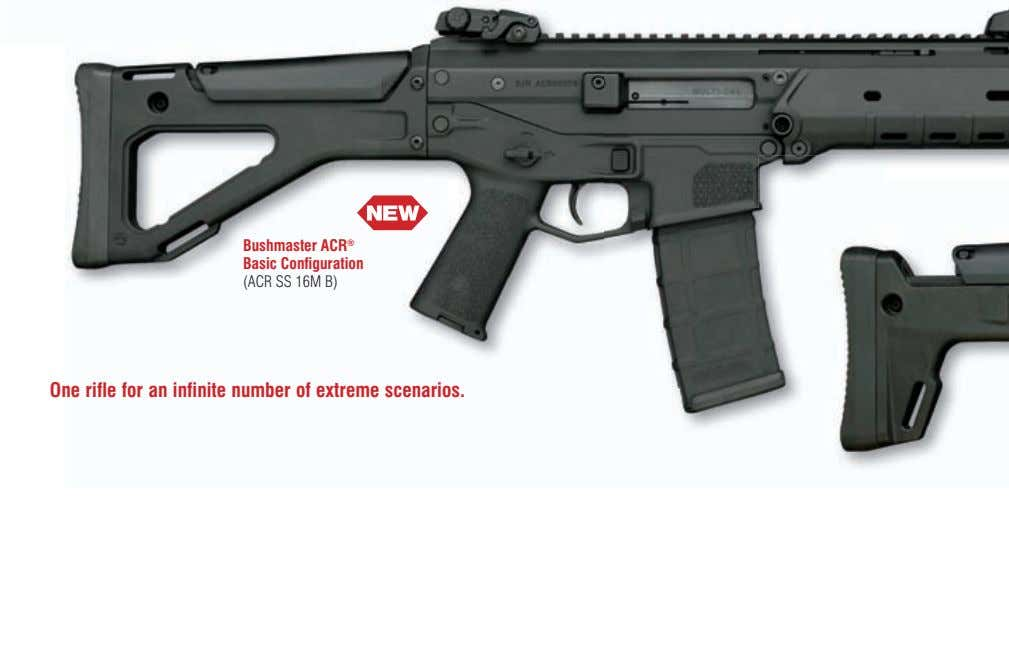 Bushmaster ACR ® Basic Configuration (ACR SS 16M B) One rifle for an infinite number