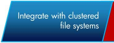 Integrate with clustered file systems