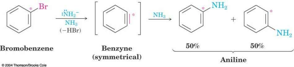 Evidence for Benzyne as an Intermediate  Bromobenzene with C only at C1 gives substitution product